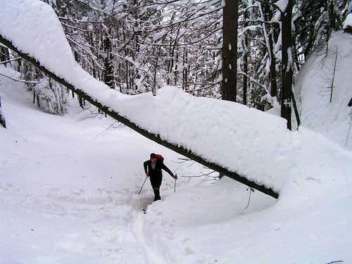 Climbing Wieselstein, which...