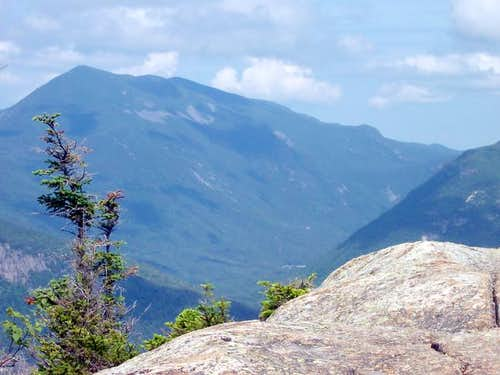 Mt. Willey from the summit of...