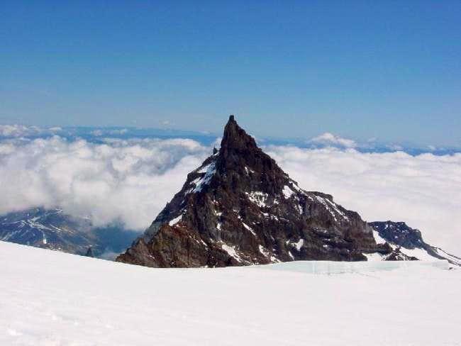 Little Tahoma Peak from...