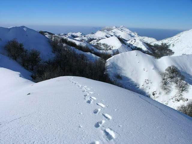 view on sv. ilija, january 2006
