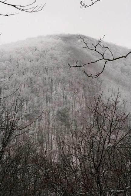 Tray Mountain, 4430 feet