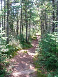 The trail right near East...