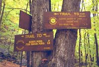 The trail to Fishbrook Pond &...