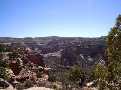 Shot of Rattlesnake Canyon...