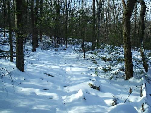 Fresh snow over the trail on...
