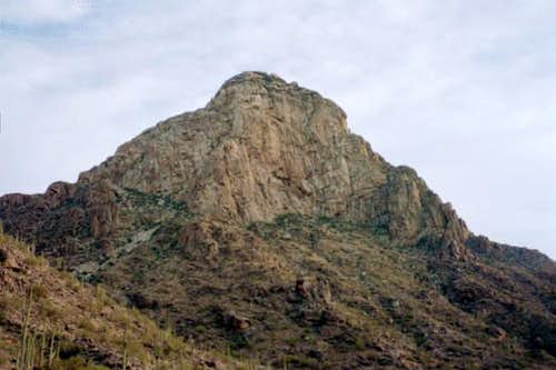 A view of South Newman Peak...
