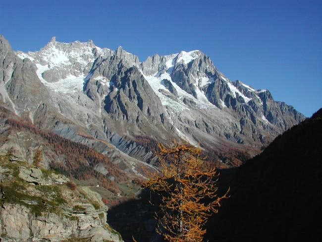 The Monte Bianco Group, Dente...
