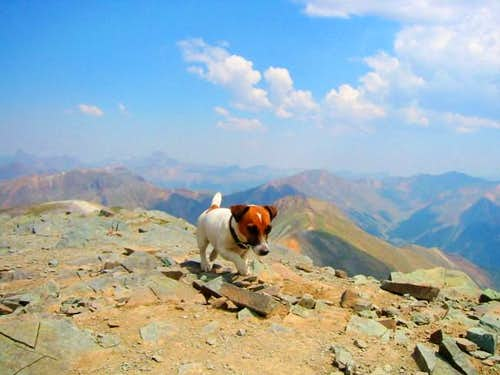 Lucy on Handies Summit.