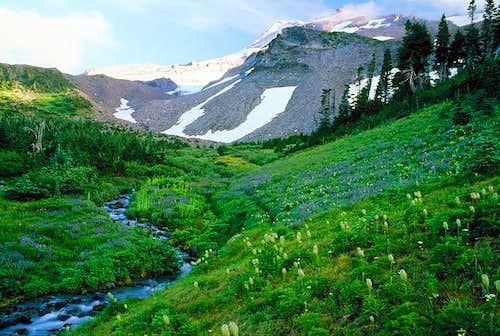 Mount Hood from Elk Cove...