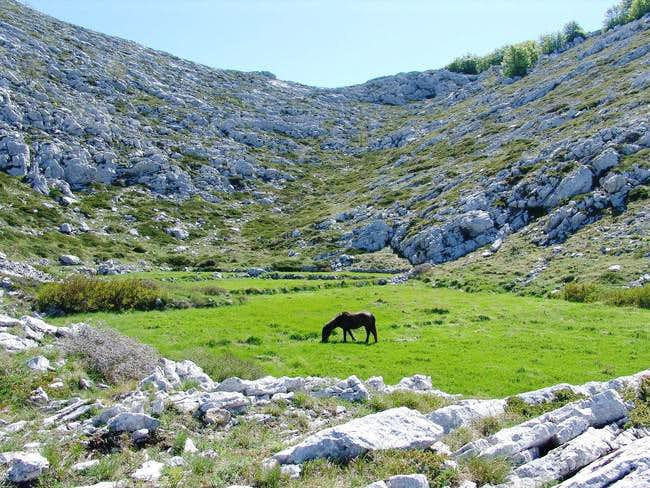 Karst countryside on Biokovo mt.