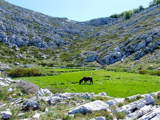 Karst countryside on Biokovo mt.
