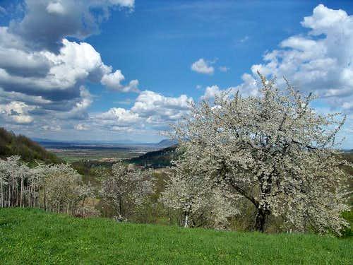 Samoborsko gorje (Samobor hills) in Zumberak/Gorjanci