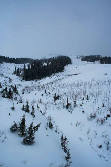 Marble Peak's East Bowl...