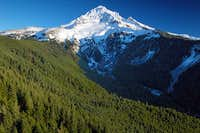 Mount Hood as seen from Bald...