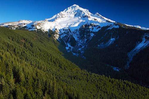 Mount Hood as seen from Bald...