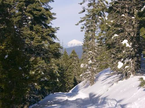 Mount McLoughlin from the...
