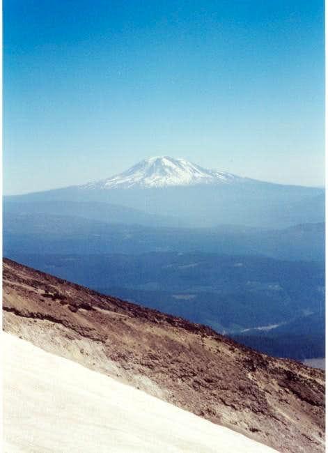 Mt. Adams from Monitor Ridge...