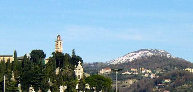 Alpesisa 31 January 2006...