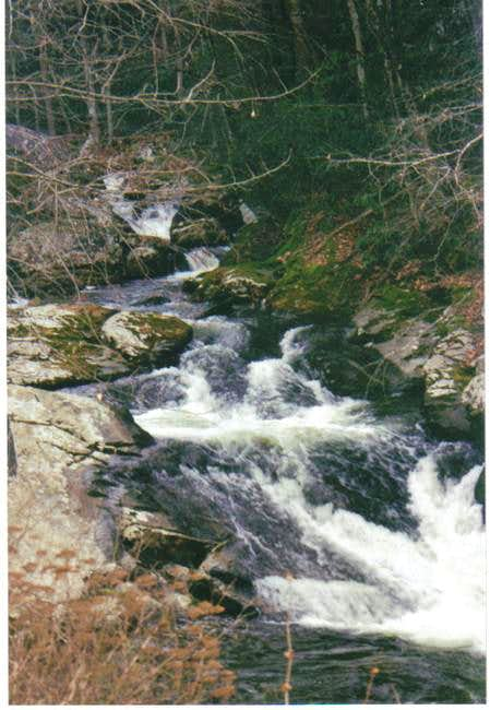 Tumbling Creek