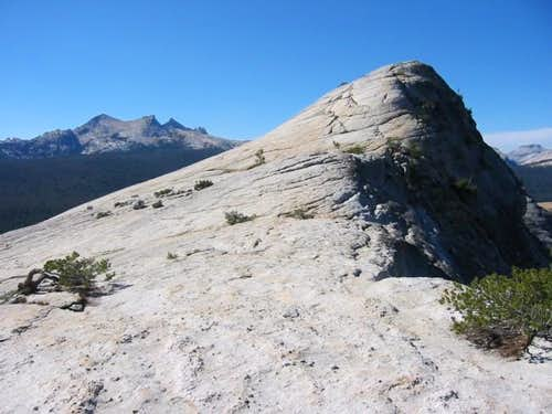 Lembert Dome summit from the...
