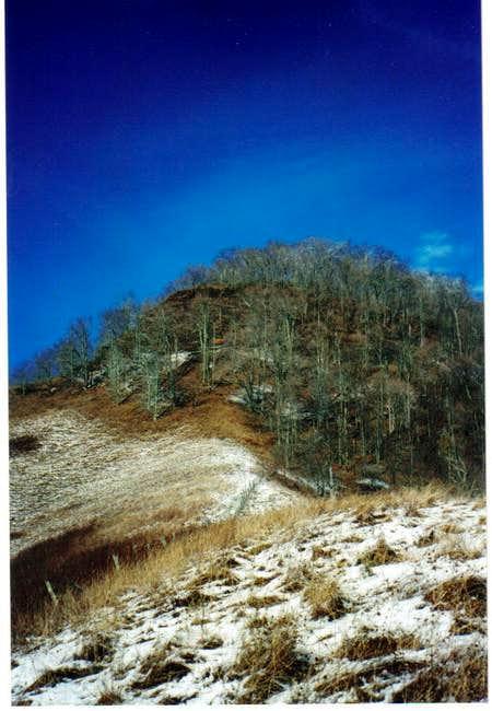 Beartown Mt