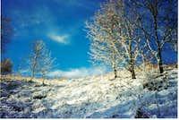 Light winter snow