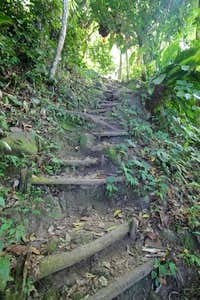 Gros Piton Nature Trail....