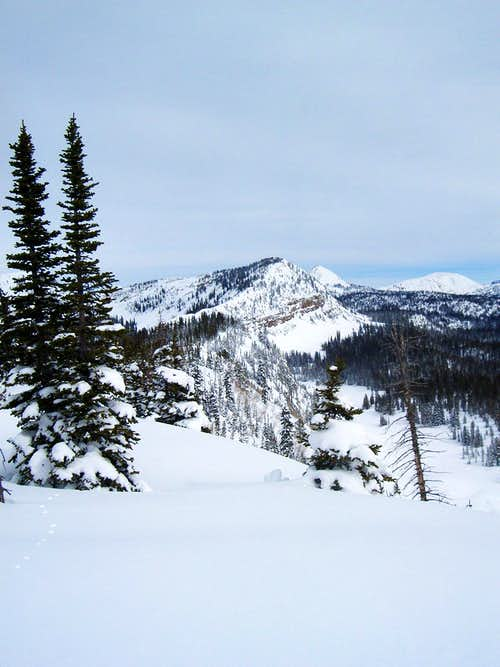 Norway Ridge as seen from its...