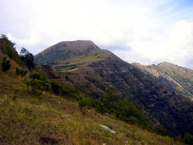 Alpesisa. A view of...