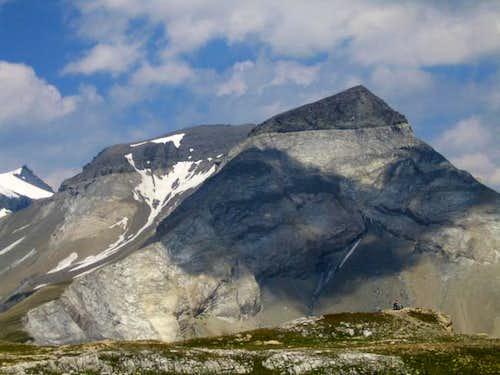 South Ridge of Piz Dolf (July...