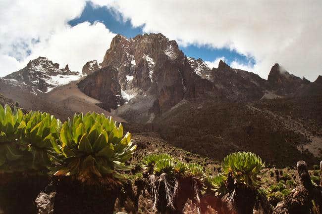 Summit of Mount Kenya seen...