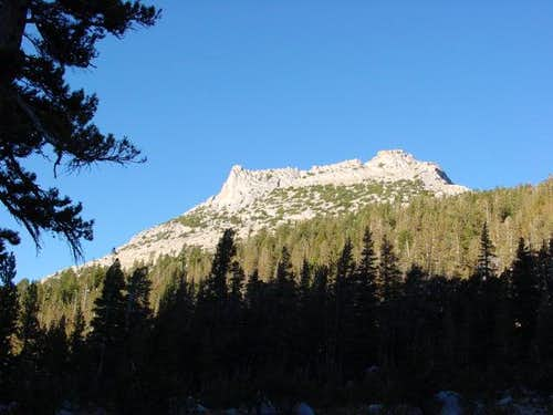 Tresidder Peak