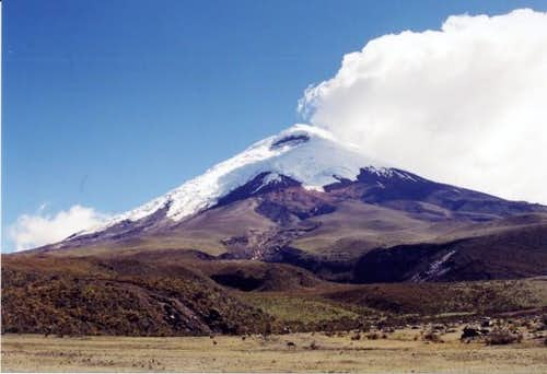 Mt. Cotopaxi on the way back...