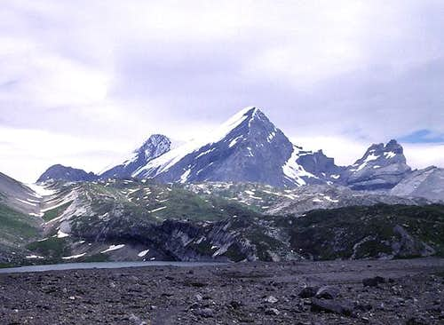 Rinderhorn from the SW