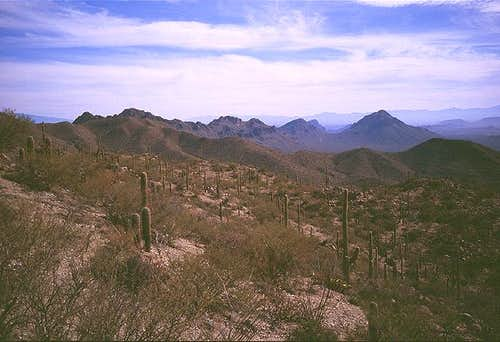 View south towards the Tucson...
