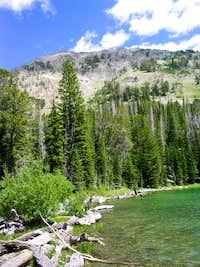 Miner Lake Looking Up at Norton Peak