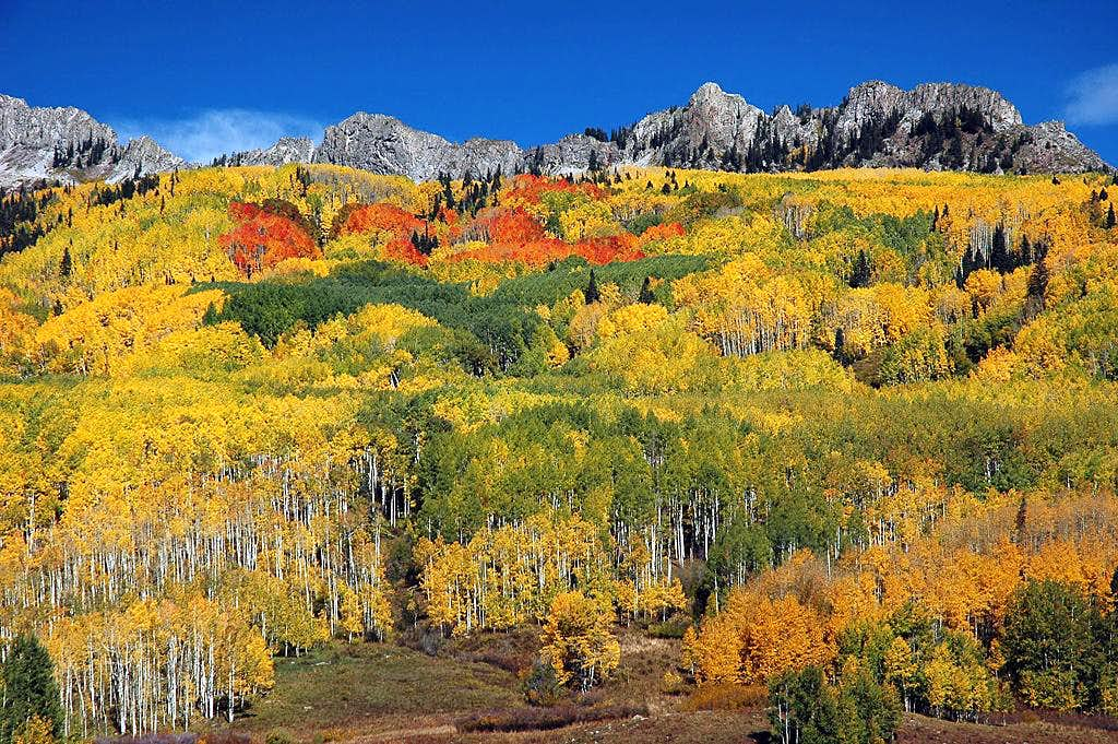 Fall Colors below the Grand Dike - Mount Owen