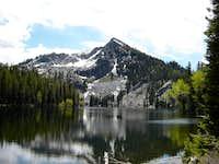 Jughandle Mountain - Idaho