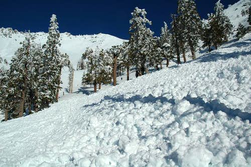 Large wet snow avalanche on Mt. Baldy