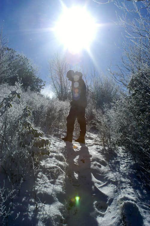Summit Sunburst