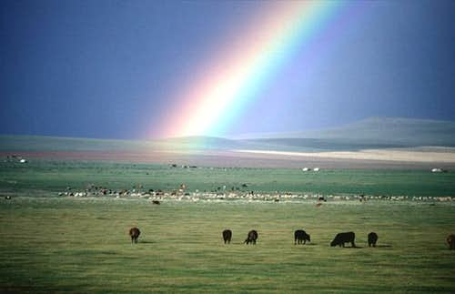 Rainbow over the Mongolian steppe