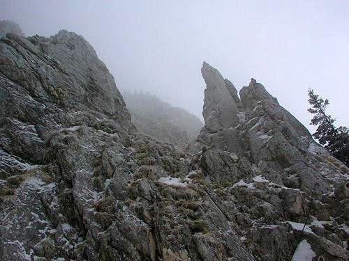way to the ridge