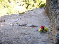 Last pitch on Munginella