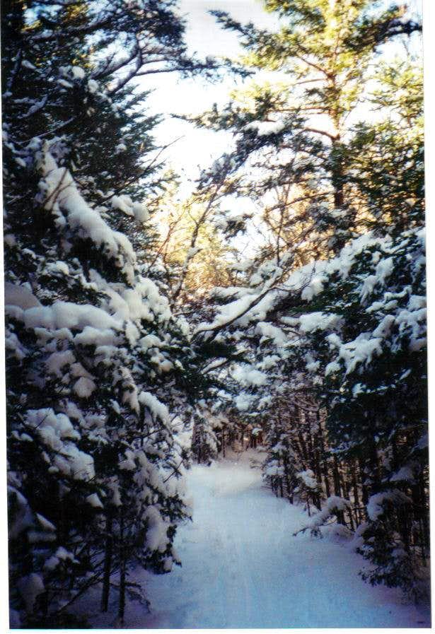 Appalchian trail