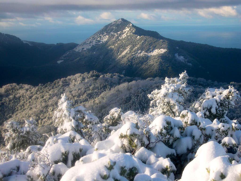 Pico Blanco from Devils Peak