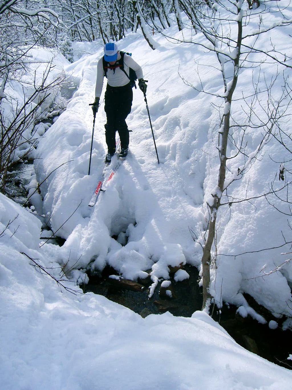 Freeze Creek not frozen