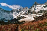 Trail to Iceberg Lake