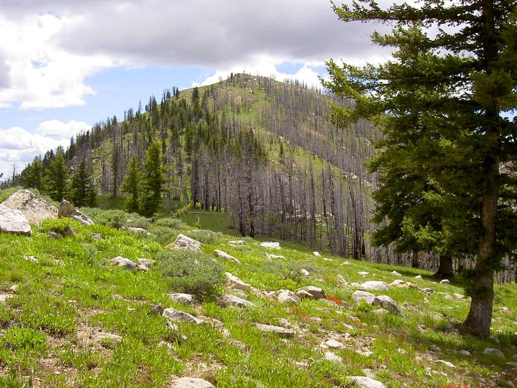 Rattlesnake Mountain Ridge