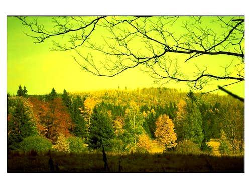 Autumn in Rudawy