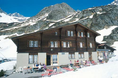 SteinGletscher bar